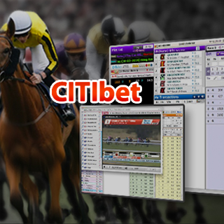 citibet net online game